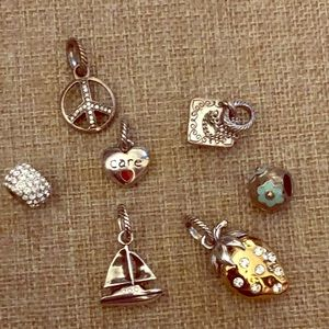 Brighton Charms and Bead Lot